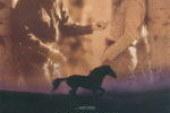L'uomo che sussurrava ai cavalli – Recensione