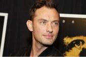 Animali Fantastici e Dove Trovarli 2: Jude Law sarà il giovane Silente