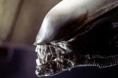 """""""Alien 5″, Ridley Scott non molla la presa"""