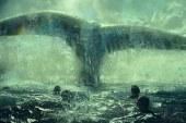 Heart Of The Sea – Le Origini di Moby Dick – Recensione
