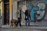 Truman – Un vero amico è per sempre: Cesc Gay e Javier Cámara a Roma per presentare la pluripremiata pellicola