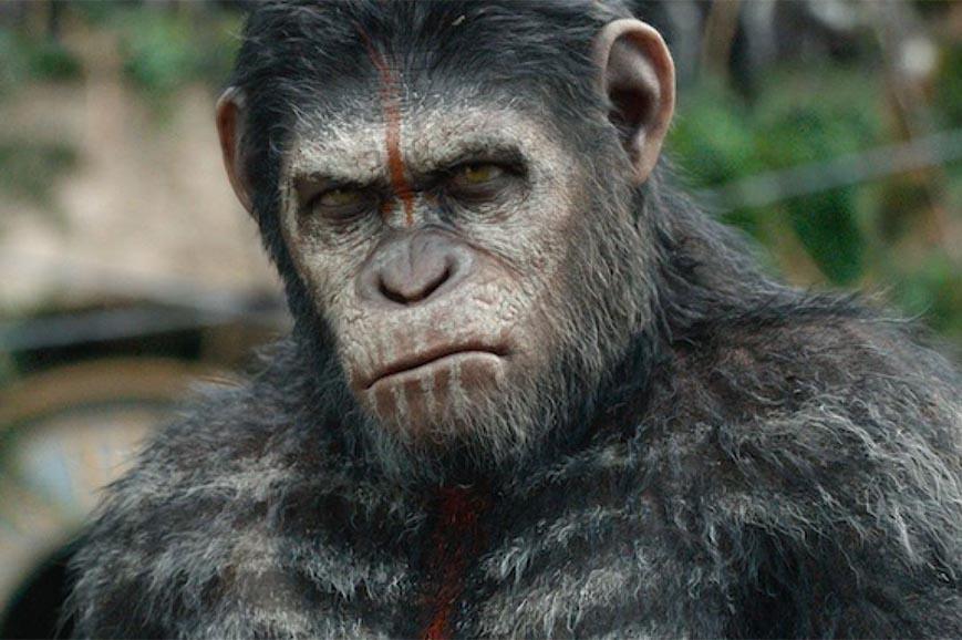 """""""The War - Il pianeta delle scimmie"""" still"""