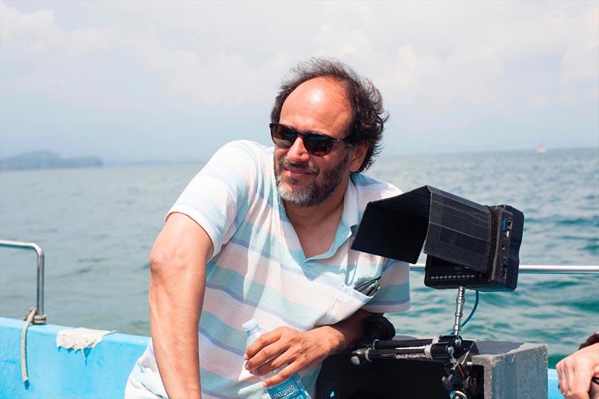 Luca Guadagnino film